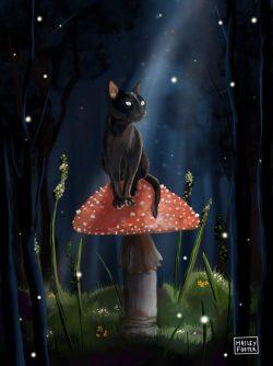 black cat on mushroom at night